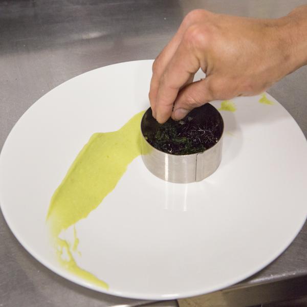 3. Añade un lecho de algas